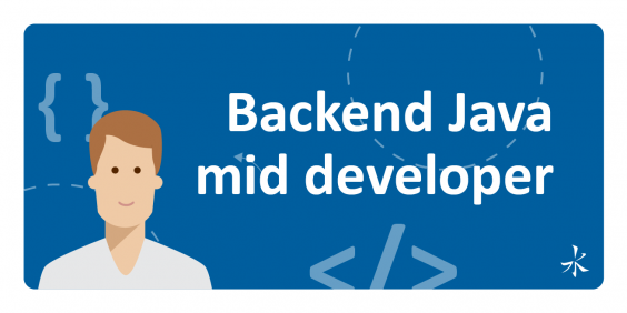 Middle Java BackEnd Developer