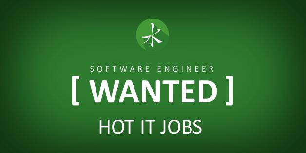 IT Jobs, Employment | IT Recruiting Agency | Zhuko net